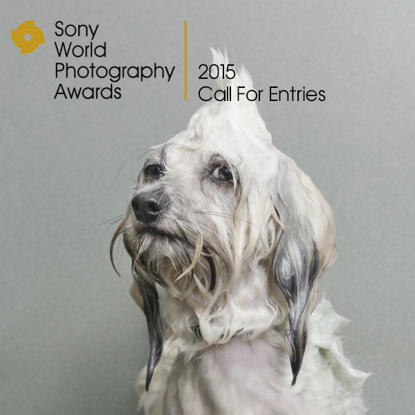 Sony_World_Photography_Award-academiadefotografie.ro