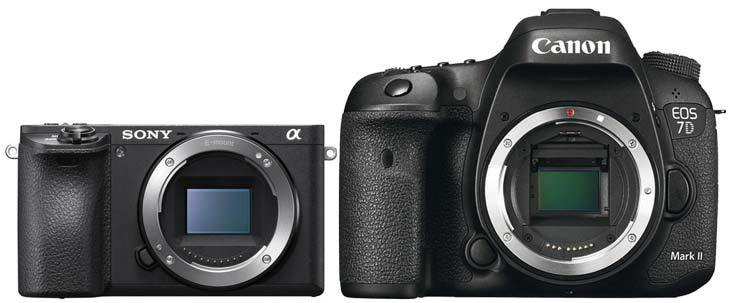 Workshop fotografie canon eos 65